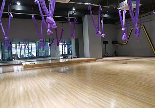 艾力特PVC运动地板