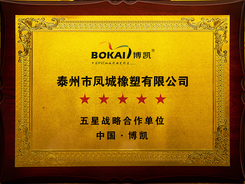 凤城橡塑-博凯五星战略合作单位证书