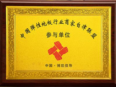凤城橡塑-中国弹性地板行业商家自律联盟参与单位证书