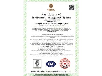凤城橡塑-博凯环境管理体系认证2
